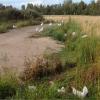 kanoja pellolla