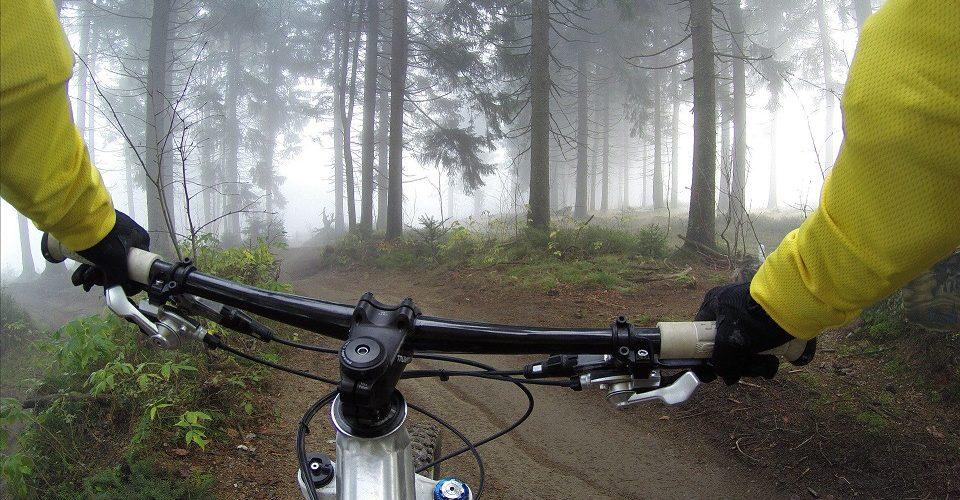 polkupyörä metsässä