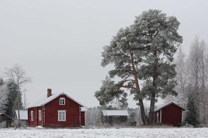 maalaismaisema talvella
