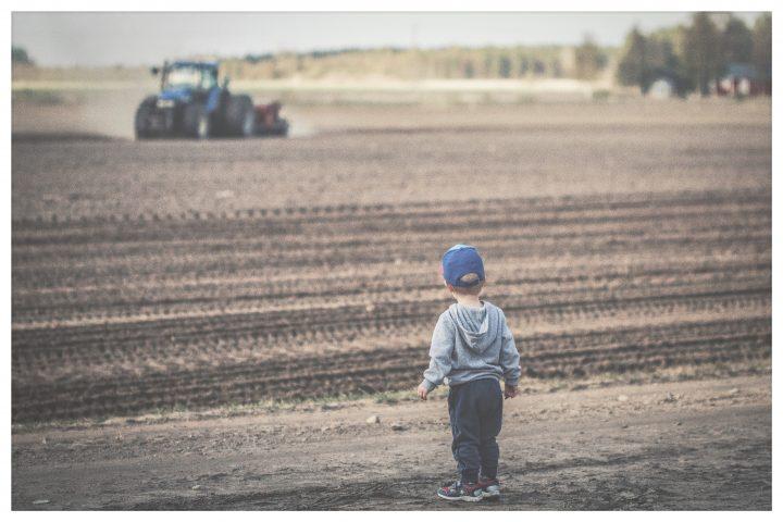 poika pellonreunalla